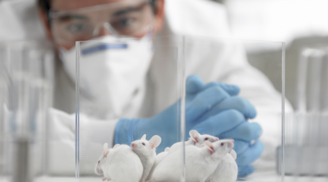 China To No Longer Require Animal Testing on Imported General Cosmetics from May 1